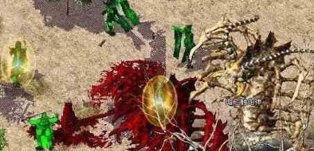 面对特殊传奇暗黑版本里戒指战士该如何选择 传奇暗黑版本 第1张